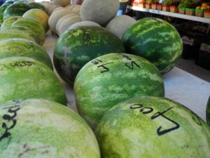 Watermelons at the Frisco Farmers Market