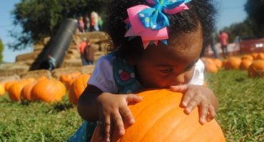 little girl kissing pumpkin