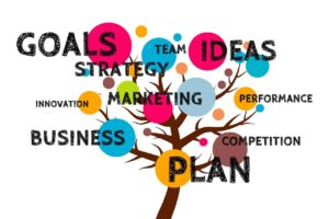 startup goals - Anderson Insurance Agency