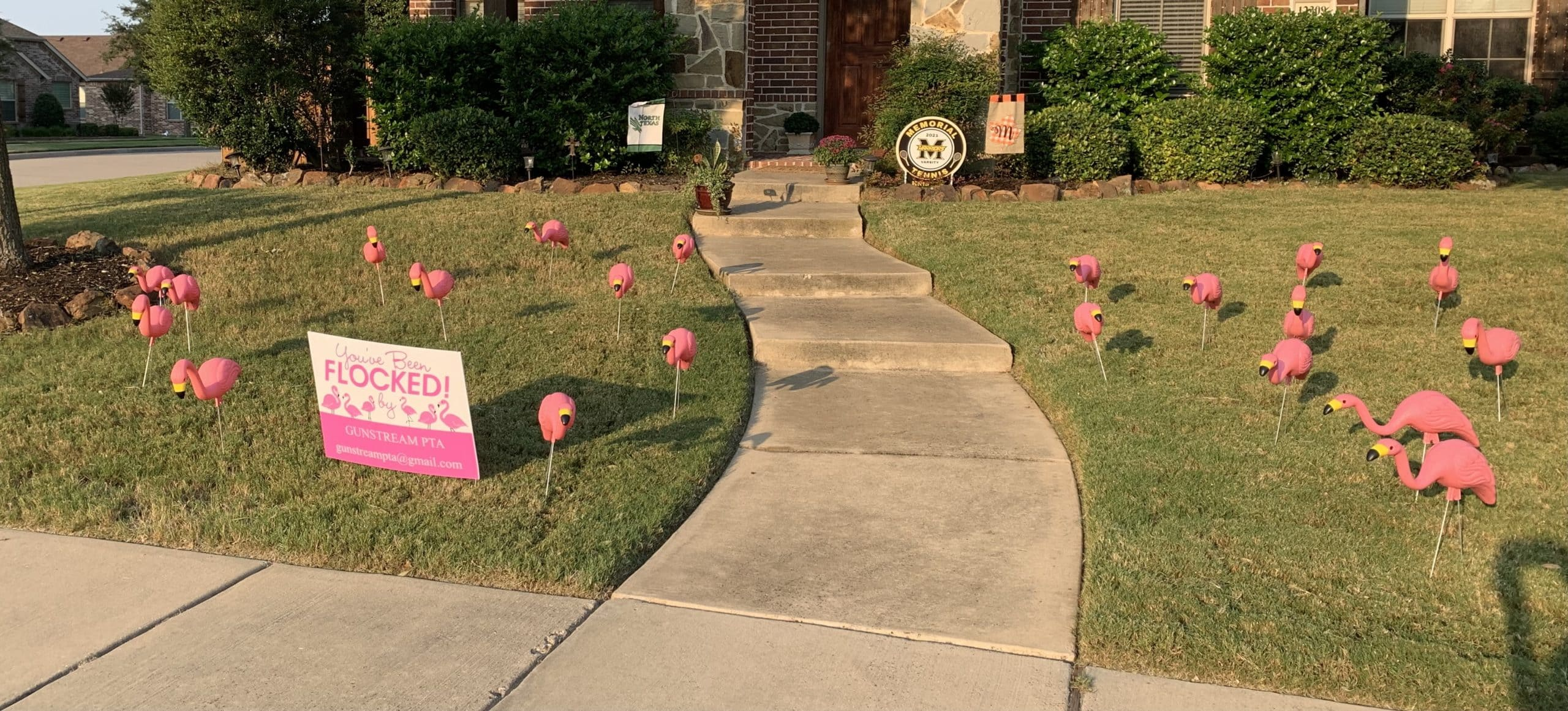 Youve Been Flocked Frisco Texas